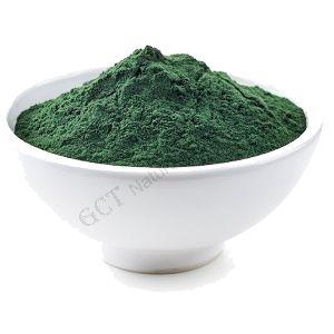 Spirulia Powder