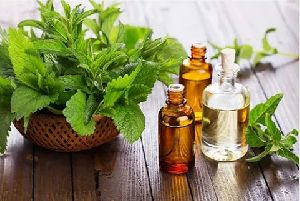 Peppermint Leaves Oil