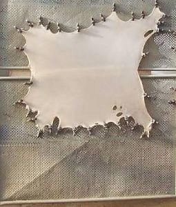 parchment leather goat