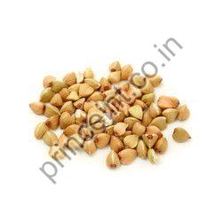 Egoma Herbal Seeds
