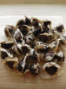 Hygienic Moringa PKM1 Seed