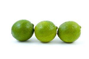 Fresh Persian Lime