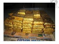 Pure Gold Bars