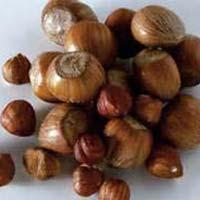 Hazelnuts, Shelled And Inshell