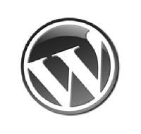 Wordpress Development Service