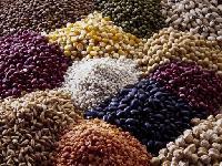 Agro Pulses
