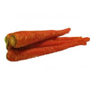 Organic Carrot Red