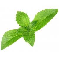 Sugar Leaf