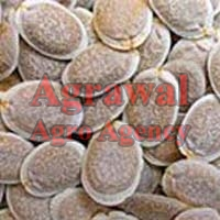 Sponge Gourd Seeds