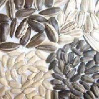 Linseed Flax Seeds Golden For Oil Extraction