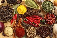 Spice Herbs