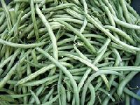 Fresh French Bean