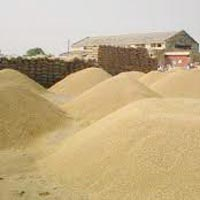 Paddy Procurement Services
