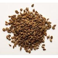 Thymol Seeds