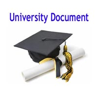 University Document Courier Services