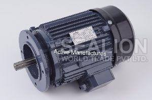 Paddle Wheel Aerator Motor