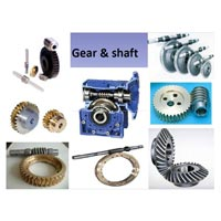 Automotive Gear & Shaft