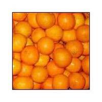 Fresh Nagpuri Orange