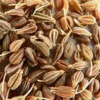 Aniseed Seeds