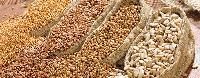 Food Grain Pulses