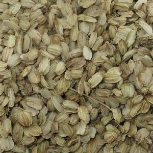 Angelica Herbal Seed