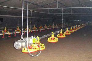 Industrial Designing, Plant & Equipment Installation