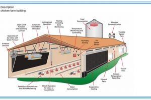 Poultry Farm Construction Services