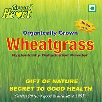 Green Heart Wheatgrass Powder