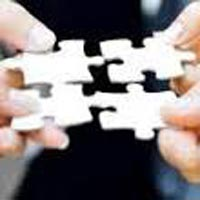 Stock Audit Assurance Services