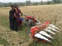 Agricultural Rice  Cutter Machine Supplier