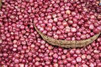 Farm Fresh Onion