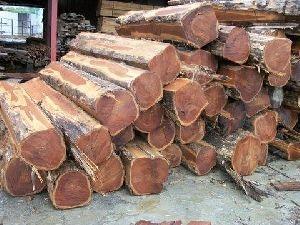 Sawn  Teak Wood