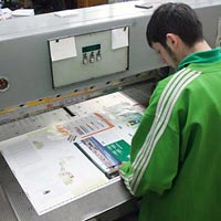 Printed Sheet Cutting Services
