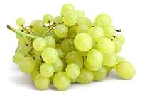 Oragic Grapes