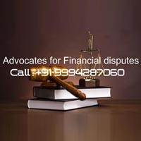 Civil Lawyers Services