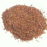 Sisymbrium Seeds
