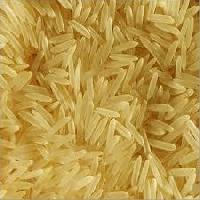 1121 golden rice