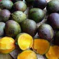 Fresh Kasturi Mango