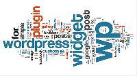 Wordpress Website Development Services