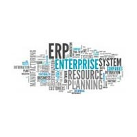 Erp Support Services