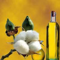 Cotton Solvent Oil