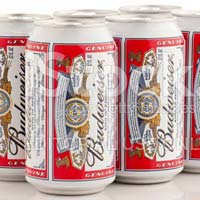 Budweiser Beer 330ml Bottle & Can