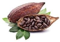 Natural Cocoa Beans
