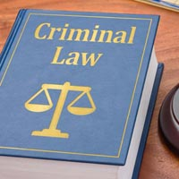 Criminal Legal Services