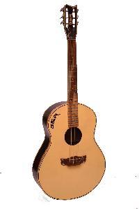 Professional Spanish Classic Acoustic Guitar