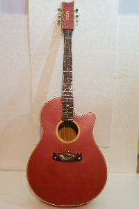 Cutaway Semi Electric Guitar