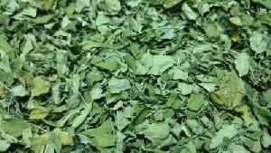 Dried Moringa Oleifera Leaves
