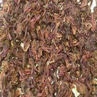 Dry Hibiscus Rosa Sinensis