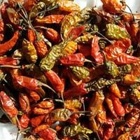 Fatki Red Chilli