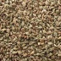 Rhyme Thyme Herb Seeds